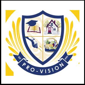 Pro-Vision Inc